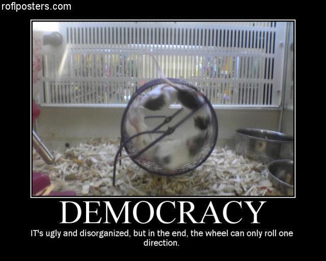 Funny_Stupid_Demotivational_Poster_24.jpg
