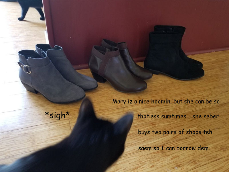 mary-cat-shoes.jpg