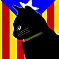 Sebas_Cat